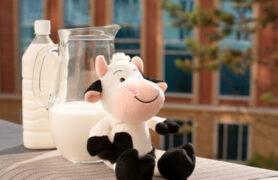 Các dòng sữa bột Vinamilk phát triển chiều cao và trí não cho bé