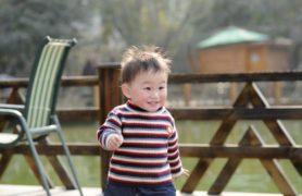 Loại sữa nào tốt cho bé trên 1 tuổi giúp tăng cân đều đặn?